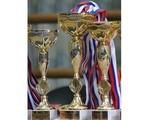 Кубок Ростовской области и областные соревнования на призы Федерации по прыжкам на батуте Ростовской области завершились в Таганроге (21-22 мая 2016)