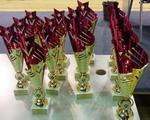 Сборная команда батутистов Ростовской области завоевала 13 медалей первенства России 2016 года! (Старый Оскол, 19-24.10.2016)