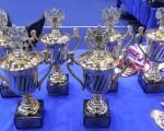 7 медалей завоёвано батутистами сборной команды Ростовской области на 1-ом этапе Кубка России по прыжкам на батуте (Ярославль, 1-6 марта 2017)